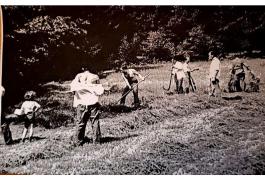 Zdjęcie ze żniw u państwa Micorów.